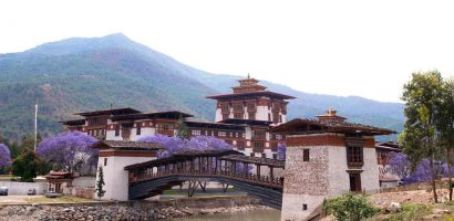 Đến Bhutan – vương quốc hạnh phúc ngắm phượng tím rợp trời